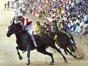 Над конными бегами в Италии нависло проклятье
