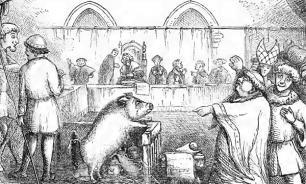 Суды над животными — как казнили братьев наших меньших