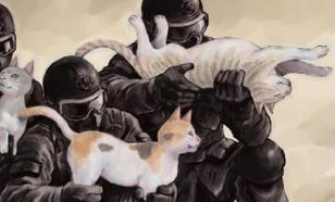 В Орле прошла спецоперация по захвату похитителя котенка