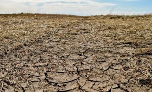 В Ставрополье введен режим ЧС из-за заморозков и засухи