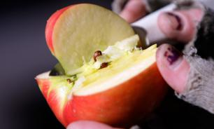 Цены на российские яблоки взлетели в два раза