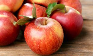 Яблочная терапия: чем полезны яблоки