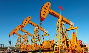 Крупнейшие нефтяные компании России пожаловались Путину на налоги