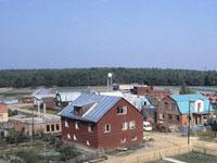 Чиновницу, торговавшую Бородинским полем, отстранили от работы.