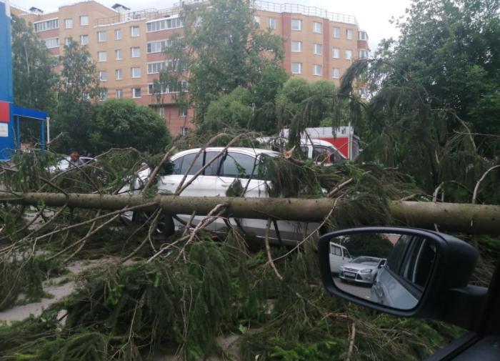 В Петербурге устранили все последствия непогоды за одну ночь