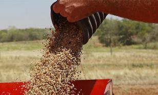 Минсельхоз: Продовольственное эмбарго против Европы надо продлить на пять лет