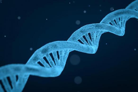 Генетическое заболевание новорождённых  поможет выявить новая методика