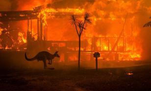 Природные пожары в одном из регионов Австралии локализованы