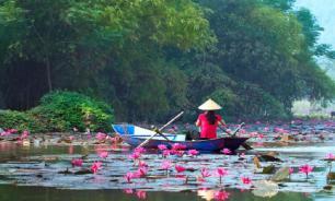 Во Вьетнаме приостановили прием туристических групп из Китая
