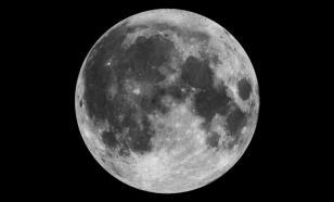 На Луну хотят отправить спутник-ковчег с копиями всего живого на Земле