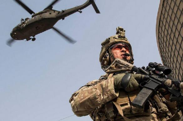 Агрессивный гусь заставил американских военных бежать