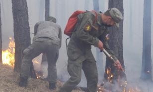 Военнослужащие в Туве потушили полосу огня в 25 километров