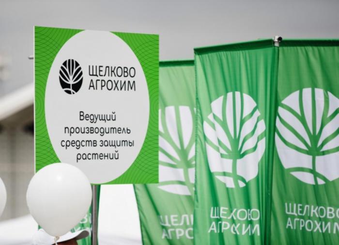 На краю пропасти: как рейдеры душат экономику РФ