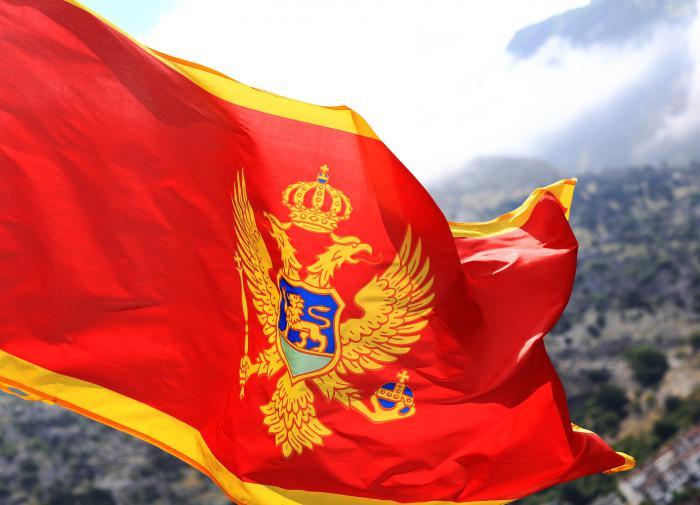 """Сюрприз для ЕС: Китай через инвестиции """"заходит"""" в Черногорию"""