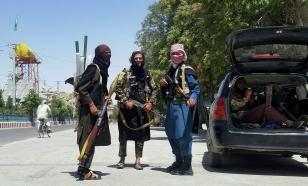 """""""Талибан""""* планирует наладить дипломатические отношения с Германией"""