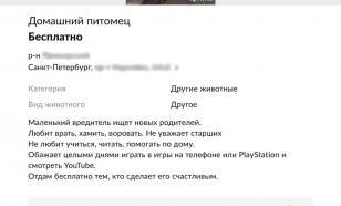 В Петербурге мужчина отдавал своего сына через Avito
