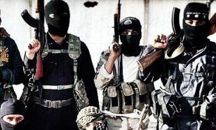 Исламский радикализм в Германии подпитывают саудиты