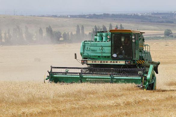 Россия приостановила поставки зерна за территорию стран ЕАЭС