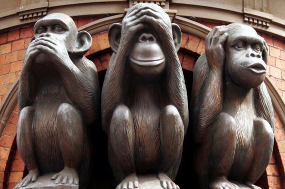 Отрицательная оптимизация хлопка: новояз чиновников и СМИ
