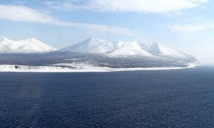 Арктика: Великое переселение насекомых