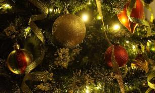 Врачи-аллергологи дали советы по установке новогодней елки