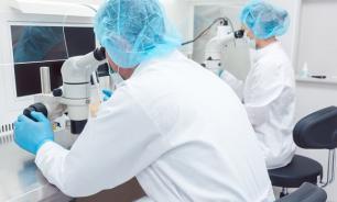 Иммунные клетки восстанавливаются после острого повреждения почек