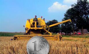 Россия в 2016 году побила советские аграрные рекорды