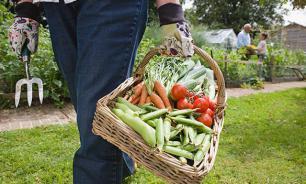 Турции разрешили поставить в Россию несколько видов овощей