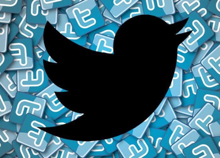 Член Общественной палаты объяснила, как нужно бороться с Twitter