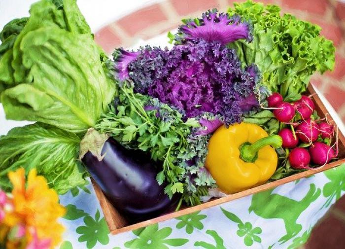 Диетолог объяснила, в каком возрасте можно перейти на вегетарианство