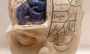 Копия человеческого мозга уже создана