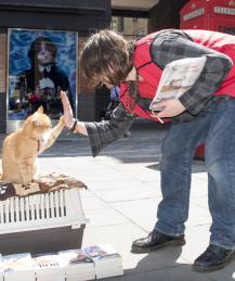 Богатые и знаменитые: и у животных свои причуды