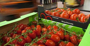 Сажи Умалатова: Санкции реанимируют сельское хозяйство России