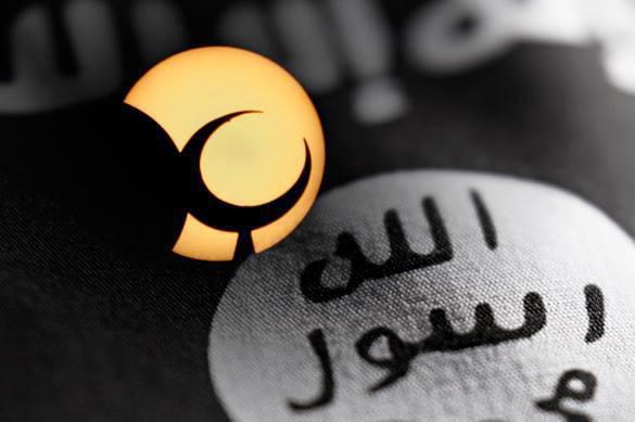 Сотрудник К-9 о том, как вербуют в ИГИЛ