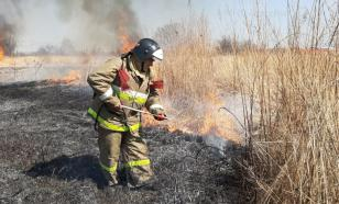 В России действуют 55 лесных пожаров