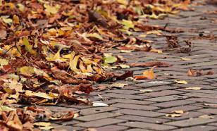 Синоптики прогнозируют аномальный ноябрь