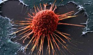 """Генетики пояснили, почему раньше у человека был """"иммунитет"""" к раку"""