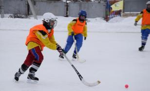 Российским журналистам запретили критиковать хоккей с мячом