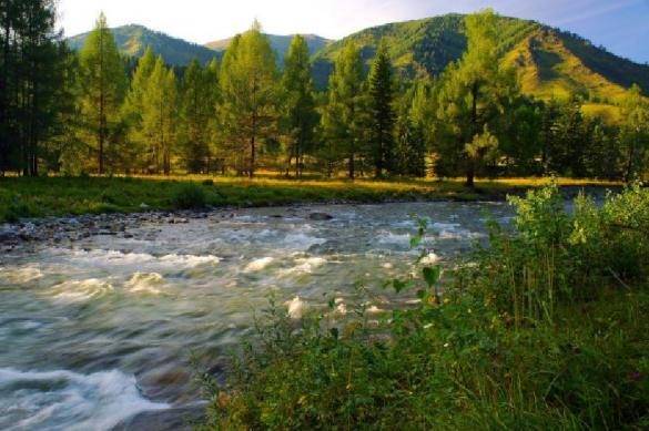 В 2019 году Алтайский край посетили более 9 млн туристов