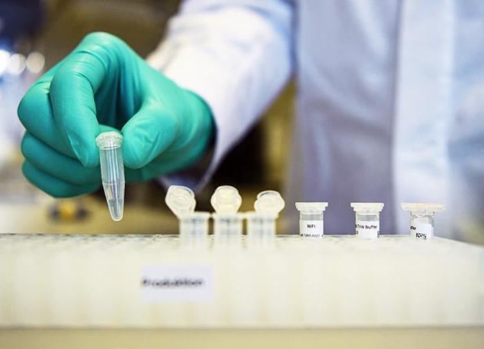 В Оксфорде прошли успешные испытания вакцины от COVID-19