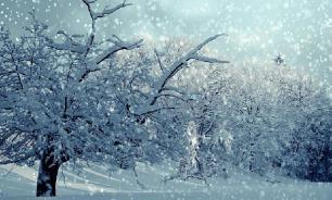 За сутки в Челябинской области выпало 15 см снега