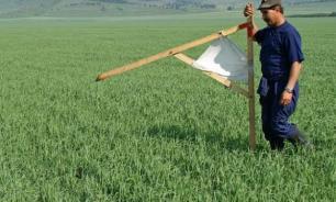 Москвичи решили освоить дальневосточные гектары: заключена тысяча договоров