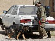 Уйти, не потеряв лица. Афганистан-2014