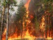 Огонь уже подбирается к Соловецкому монастырю