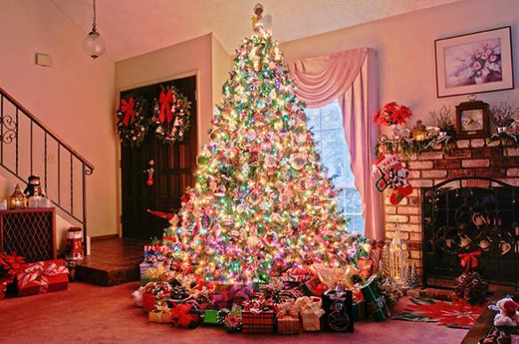 Новогодняя елка: угроза под каждой веткой