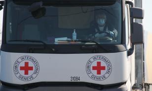 Красный Крест предупреждает о большой миграции после COVID-19
