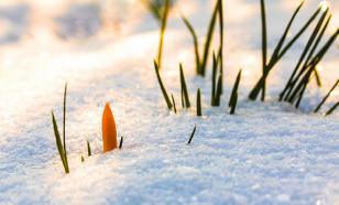 Синоптик объяснил апрельский снег в Москве
