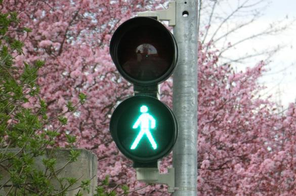 Россиянам разрешат управлять светофорами со смартфона