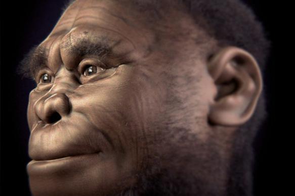 """Исследователи раскрыли тайну эволюции загадочных древних """"хоббитов"""""""