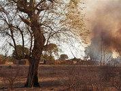 """Позиции """"Боко Харам"""" подверглись авиаудару  нигерийской авиации"""